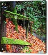 Mossy Fence Acrylic Print
