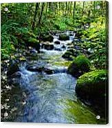 Mossy Rocks And Water   Acrylic Print