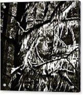 Mossy Trees In Black And White 2 Acrylic Print