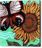 Moth And Sunflower Acrylic Print