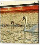 Mother And Two Acrylic Print