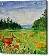 Mother Deer And Kids Acrylic Print
