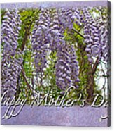 Mother's Day Card - Purple Wisteria Acrylic Print