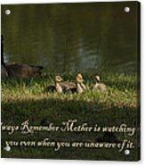 Mother's Watchful Eye Acrylic Print by Kathy Clark