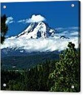 Mount Hood Framed By Trees, Oregon, Usa Acrylic Print