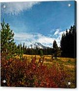 Mount Hood Oregon Acrylic Print
