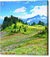 Mount Rainier Summer Colors Acrylic Print by Feng Wei Photography
