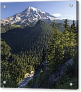 Mount Rainier Surrounded By Forest Acrylic Print