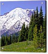 Mount Rainier X Acrylic Print