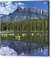 Mount Rundle And Boreal Forest  Acrylic Print