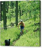 Mountain Biker And Dog On Single Track Acrylic Print