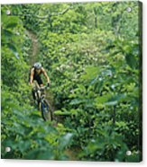 Mountain Biker On Single Track Trail Acrylic Print