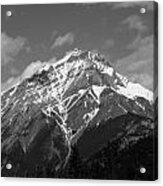 Mountain Cascade Acrylic Print