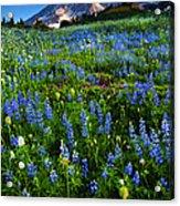 Mountain Garden Acrylic Print