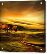 Mountain Horses Acrylic Print