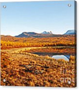 Mountain In Autumn Acrylic Print by Conny Sjostrom