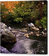 Mountain River With Rocks Acrylic Print
