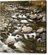 Mountain Stream In Autumn Acrylic Print