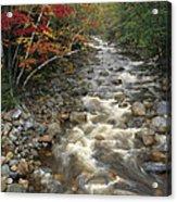 Mountain Stream In Autumn, White Acrylic Print