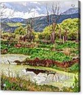 Mountain Valley Marsh - Hdr Acrylic Print