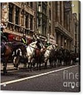 Mounted Police Acrylic Print by Rob Hawkins