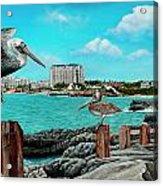 Mullet Bay Acrylic Print