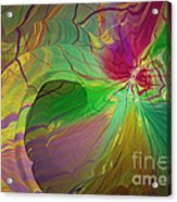 Multi Colored Rainbow Acrylic Print by Deborah Benoit