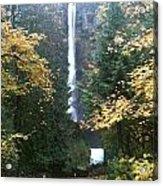 Multnomah Falls II Acrylic Print