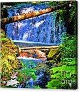 Multnomah Falls Oregon Acrylic Print