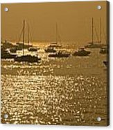 Mumbai In The Morning In December Acrylic Print