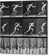 Muybridge Locomotion, Man Running, 1887 Acrylic Print