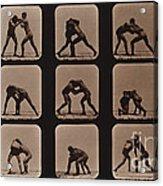 Muybridge Locomotion, Men Wrestling Acrylic Print