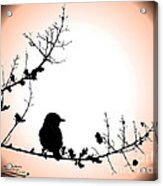 My Little Birdie Acrylic Print