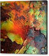 My Rusty Cage Acrylic Print