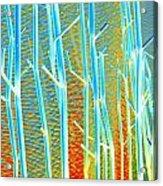 My Vegas Mandalay 8 Acrylic Print
