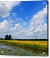 My Wonderful Eastfrisia Acrylic Print