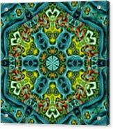 Mysteries 01  Acrylic Print