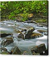 Mystic Creek Acrylic Print