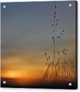 Mystical Calm Sunset Acrylic Print