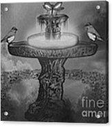 Mystical Garden Waterfountain Acrylic Print