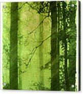 Mystical Glade Acrylic Print by Judi Bagwell