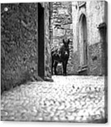 Narrow Street In Orvieto Italy Acrylic Print