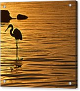 Nascente Pescadora Acrylic Print