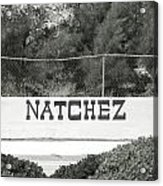 Natchez Acrylic Print