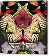 Natilus Frogs Acrylic Print