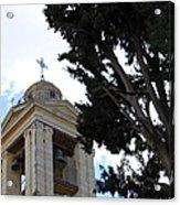 Nativity Church Tree Acrylic Print
