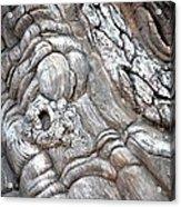 Natural Abstract 11 Acrylic Print