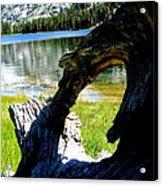 Natural Frame  Acrylic Print