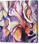 Natural Rhythms Acrylic Print