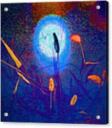 Nature Abstract Acrylic Print